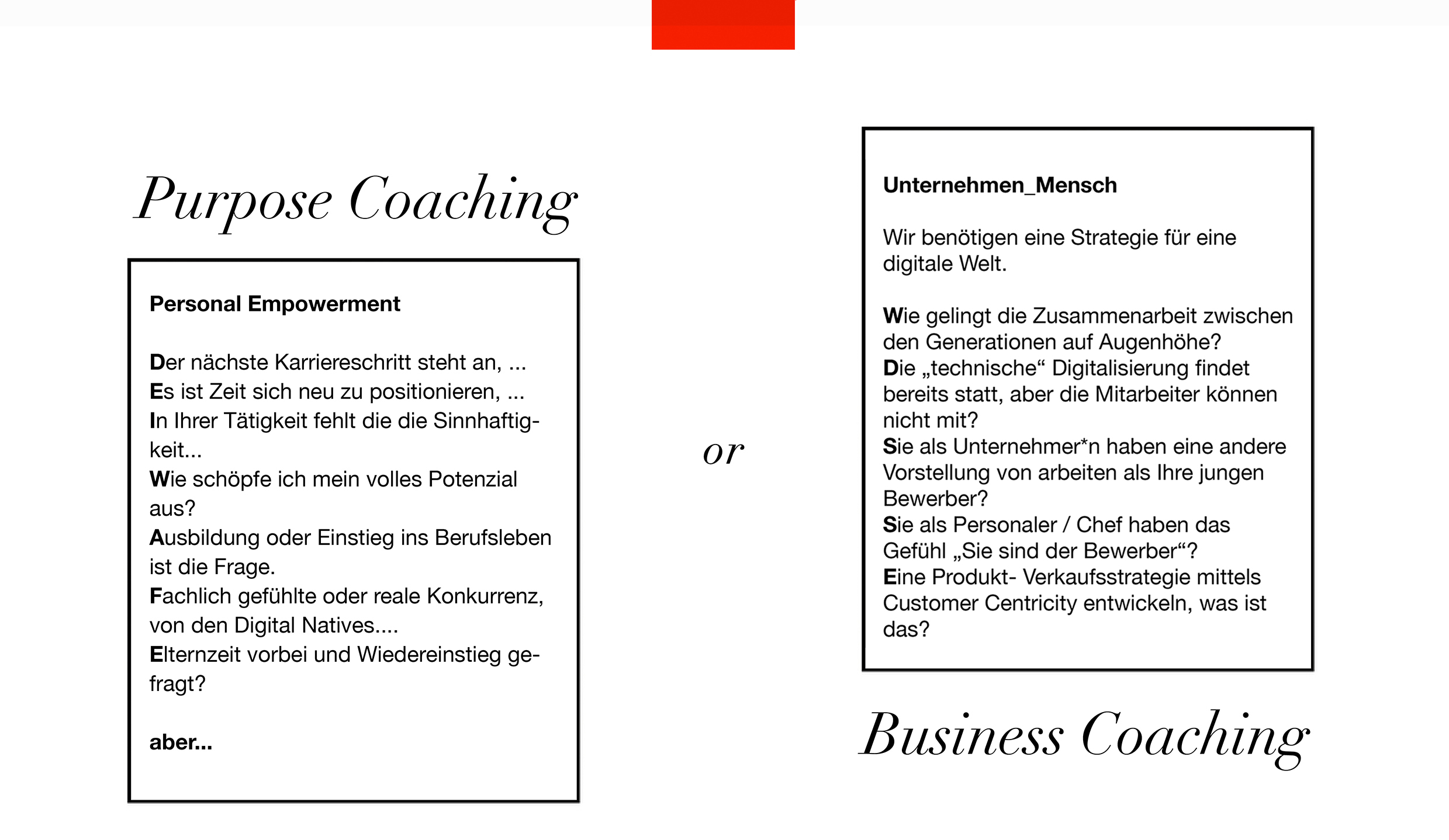 newwork, coaching, beratung